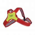 Chest harness, Air Rescue Evo Chest